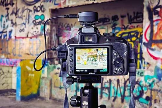 Harvard Üniversitesi, Ücretsiz Online Fotoğraf Eğitimlerine Başlıyor