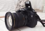 Canon 70D + Sigma 17-50 f/2.8